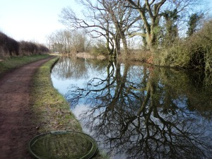 2013-04-02 - Awbridge Farm 02