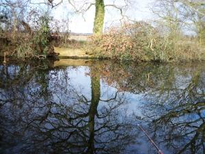2013-04-02 - Awbridge Farm 03