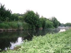 Staffs-Worcs Canal - 19/07/2013