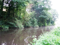26-07-2013 Staffs-Worcs Canal, Wombourne