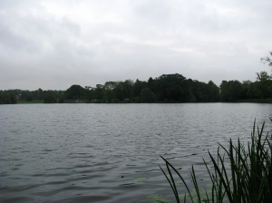 2014-05-30 Himley Great Pool 02