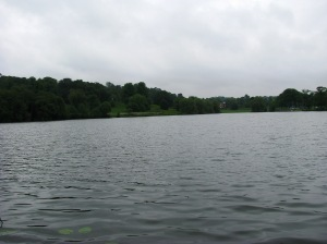 2014-05-30 Himley Great Pool 03