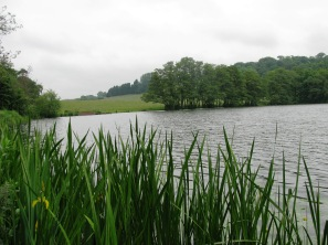2014-05-30 Himley Great Pool 04