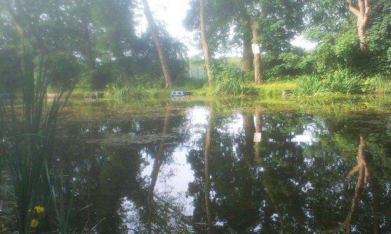 2014-06-13 Bearcroft Pool