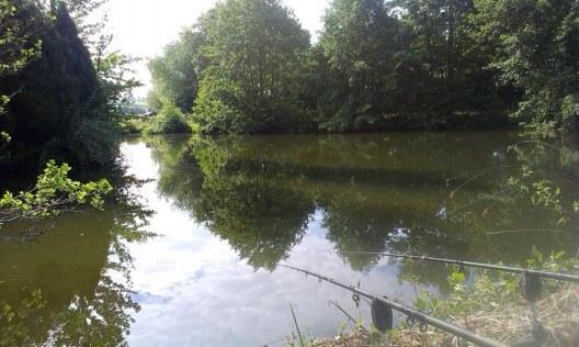 2014-07-11 Woodlands Lodge - Pool 1 04