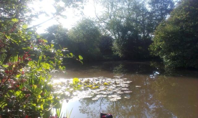 2015-06-09 Barlow's Pool 02