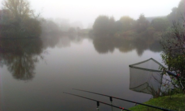 2015-11-02 Misty Morning