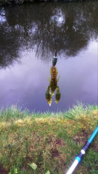 2018-03-23 Crayfish Lure 01