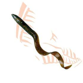 Curly Eel